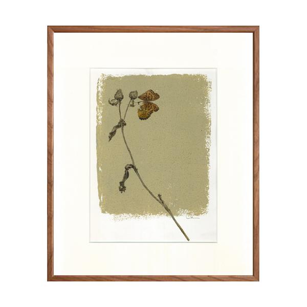 草と蝶-四切424×348_02