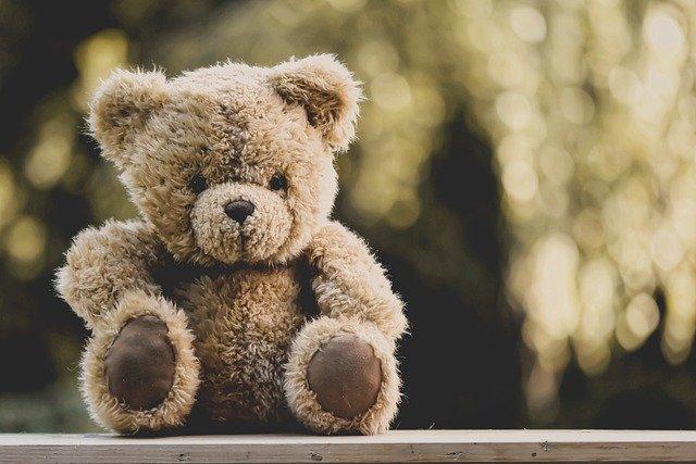 teddy-5207189_640