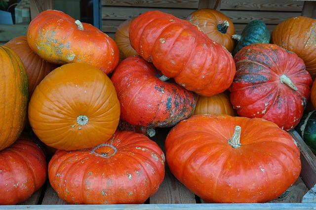 pumpkins-228522_640